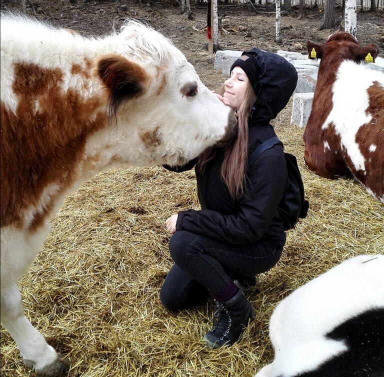 Katre kävi vierailulla Eläinsuojelukeskus Tuulispäässä, jossa oli muun muassa lehmiä.